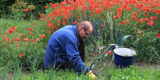 Mindful Gardening - Weeding, Feeding and Composting