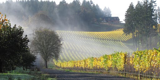Facets of Winter's Hill: A Co-Op Wine Festival