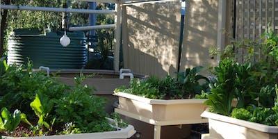 Water Saving Garden Design