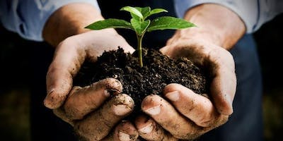 Gardening for Beginners Course