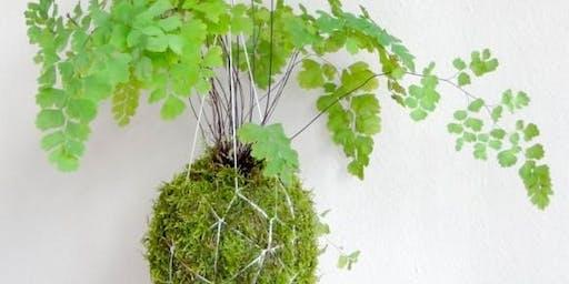 Kokadama & Japanese Gardening Workshop