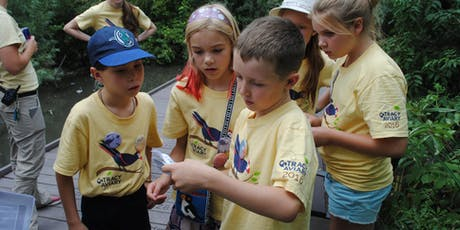 4th-5th Avian Adventure Summer Camps: July 29-August 2 tickets