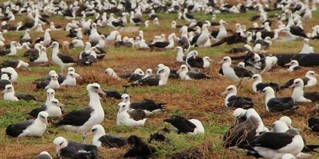 Ecology and Conservation of Pacific Albatrosses tickets
