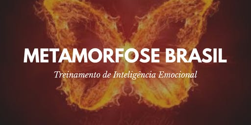Team Coaching Metamorfose Brasil