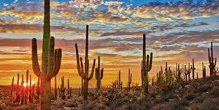 Miles of Opportunity Tour | Phoenix, AZ