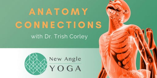 Anatomy Connections with Dr. Trish Corley September 2019