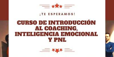 Curso de Introducción al Coaching, Inteligencia E