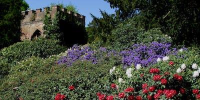 Adventures in Wonderland at Tatton Park