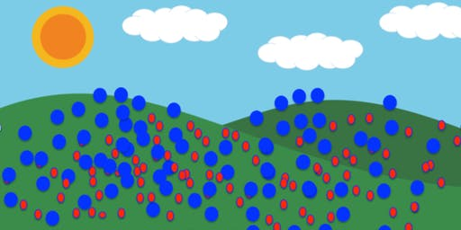 Blue Dots in the Hills Happy Hour
