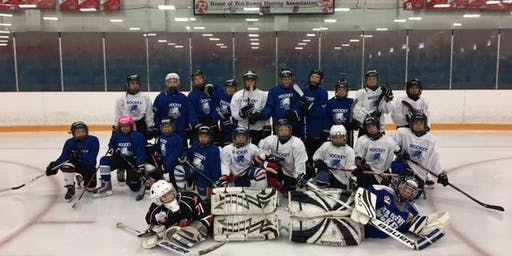 Summer Hockey Camp: August 26-30, 2019