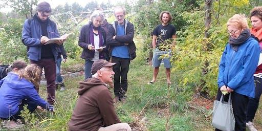 Tour Automnale du Verger Permaculturel lors des RÉCOLTES à Les Fermes Miracle
