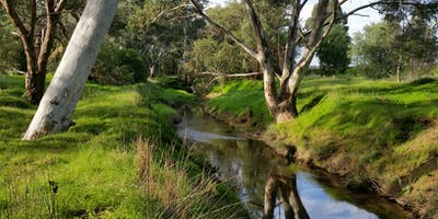 Nature Play at Bendigo Creek
