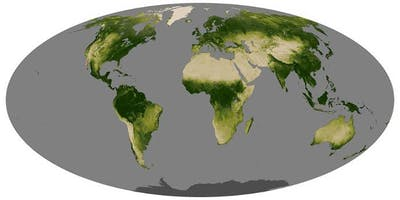 PSW Science - Satellites, Dinosaurs, Milankovitch Cycles, and Cretaceous Earth