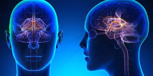 神经外科研讨会2019