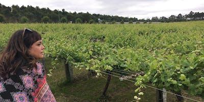 Tour of Spain - Wine Tasting & Class