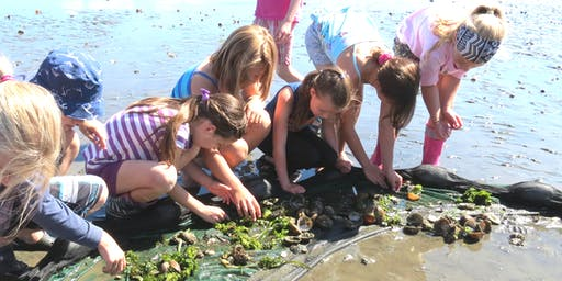 July 15-19: Science Summer Camp, Ages 7-9
