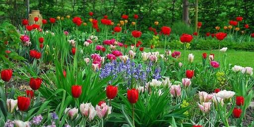 准备你的春天花园