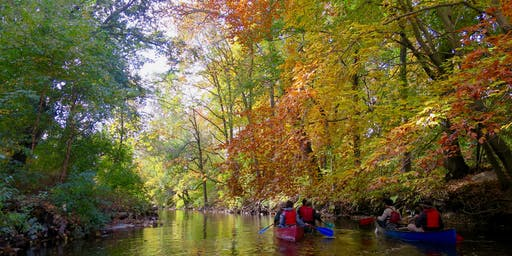 Bronx River Upper River Paddle 9/7/2019