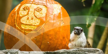 Adults Night Out: The Great Pumpkin Glow tickets