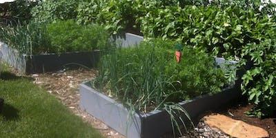 Raised Bed Gardening Workshop- Parks Shop