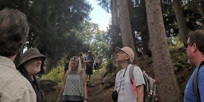 Tree ID & Health