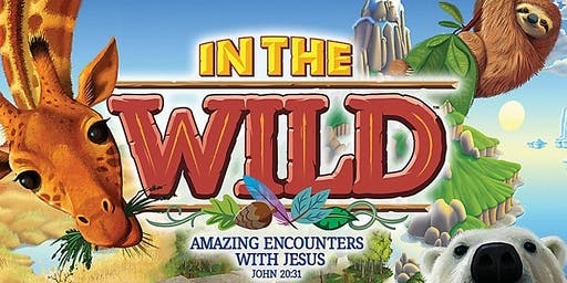 2019 IN THE WILD VBS