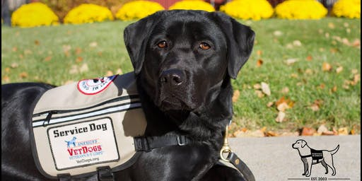 Salute to Soldiers: 2nd Annual Fundraiser to Benefit America's VetDogs