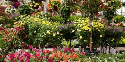 Create Your Own Creative Container Gardens: Spring Garden Series #GROWniagara