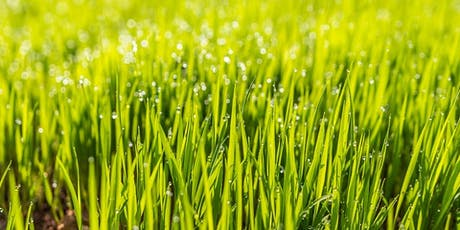 Refresh Your Lawn tickets
