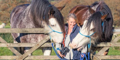 Lake District yoga,meditation with horses and photography retreat day .