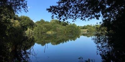 Warwickshire, Coventry, Summer Wild Food Foraging Course/Walk