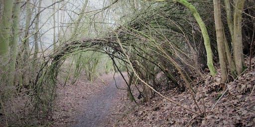 The Turning Tree - honoring the seasonal turn-times of Nature