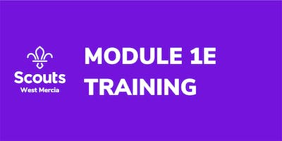 Module 1E - Essential Information for Executive Committee Members
