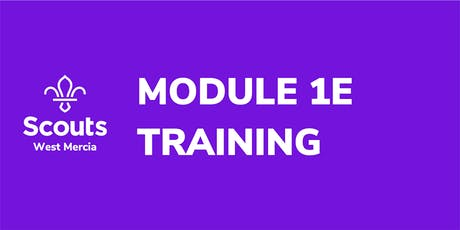 Module 1E - Essential Information for Executive Committee Members tickets