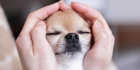 Animal Healing with Reiki tickets