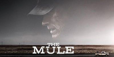KINO: The Mule