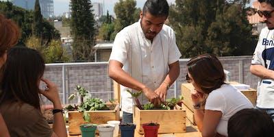 Taller de Huertos Urbanos y Autosuficiencia Alimentaria
