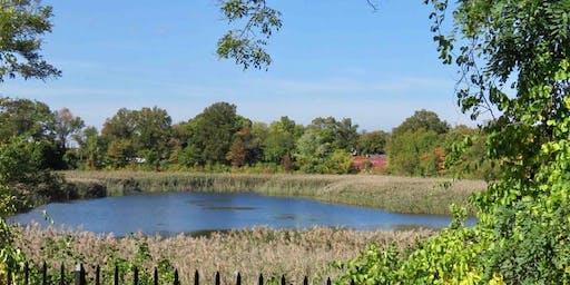 Volunteer Landscaping at the Ridgewood Reservoir