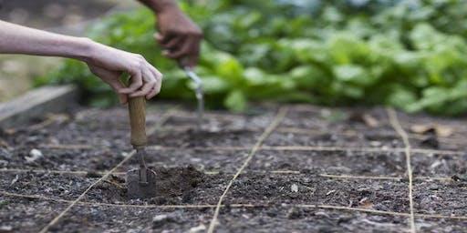 Ochs Community Garden Plot