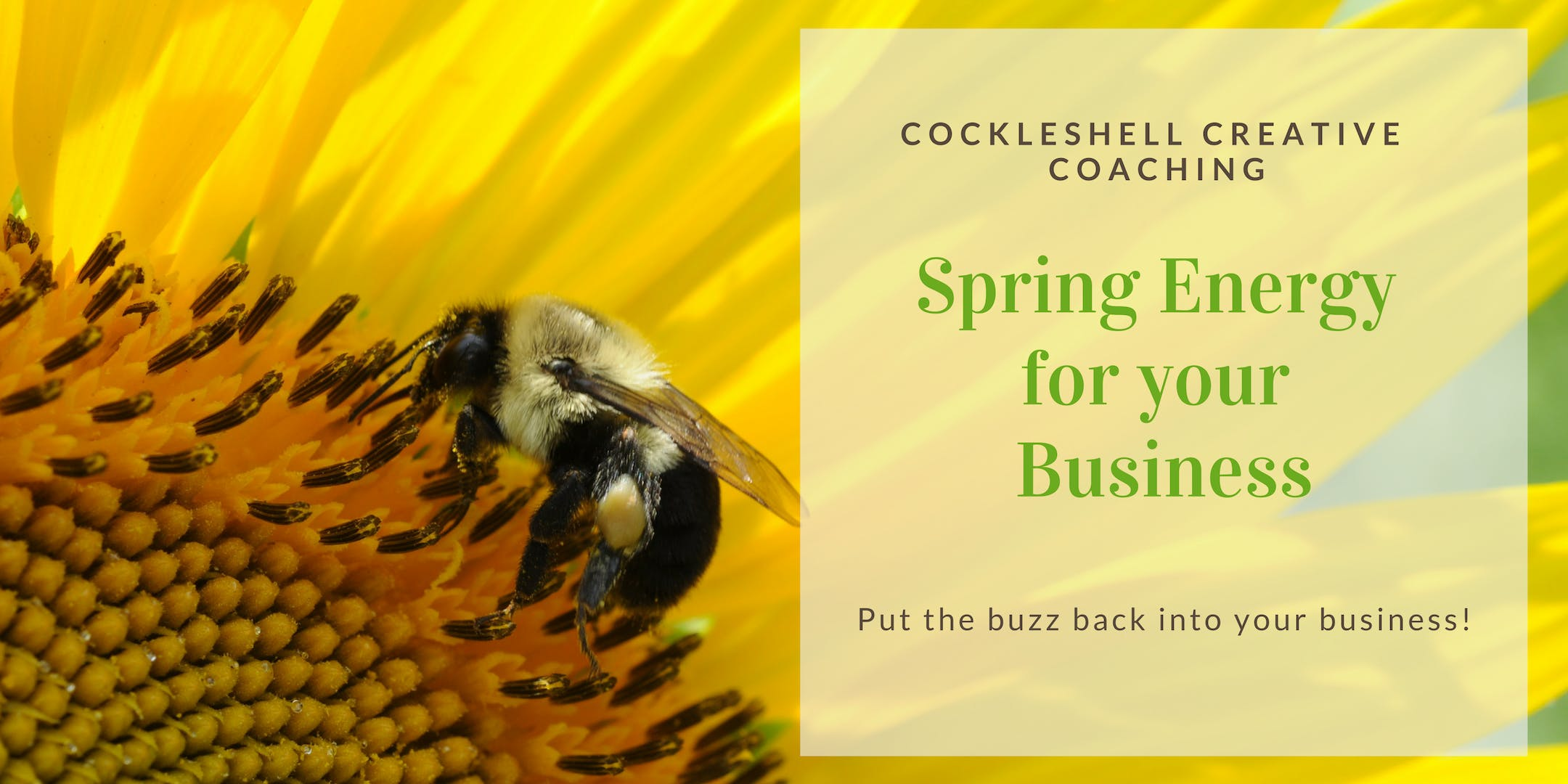 Spring Energy for your Business