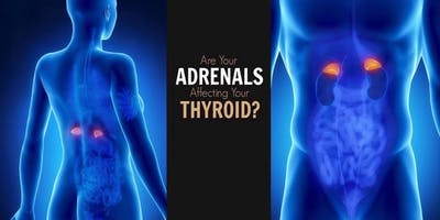Healthy Energy Naturally - Adrenal and Thyroid Workshop