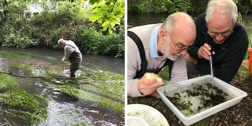 REARRANGED Riverfly Monitoring Training
