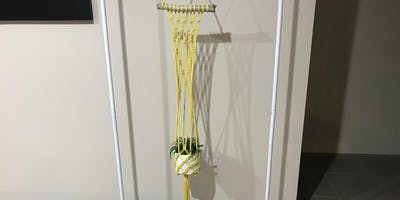 Make your own Macrame Pot Plant Hanger