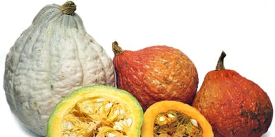 Vegetarian Cooking - Fall Vegetables