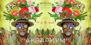 """Концерт группы """"Аквариум"""" 17 мая в Лондоне"""