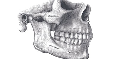 Pilates Workshop |  Neck and Jaw