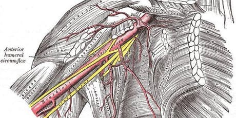 Neurofascial Approach to Entrapment: Upper Extremity (TOS & CTS) tickets