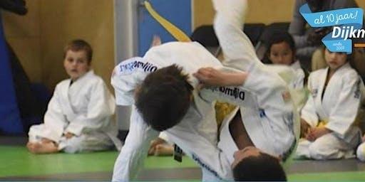Bushido Middelstummer judotoernooi 22 juni 2019