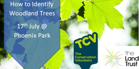 How to identify Woodland Trees tickets