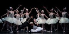 Swan Lake Dreams Audition - Birmingham